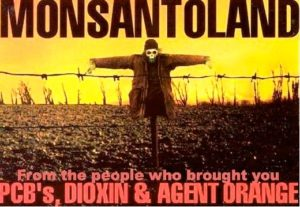 Monsanto's Deadly Gift for Earthquake-Stricken Haiti…
