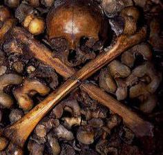 Mr. Préval is the executioner of the Haitian people.  A case of Genocide that will not remain unpunished