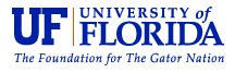 New UF-created technique may help quell cholera outbreak