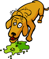 ONLY A DOG RETURNS TO ITS VOMIT~BELLERIVE CONSIDERED AS MARTELLY PRIME MINISTER