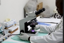 Florida university opens TB lab in Haiti