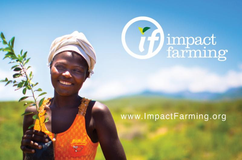 Haiti's Smallholder Farmers Alliance (SFA) launch of our new U.S.-based strategic partner, Impact Farming.
