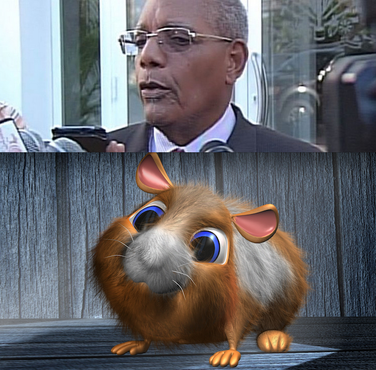 ATTACK OF THE KILLER HAMSTER – ROSNY DESROCHES DESTROYS OUR HOPE FOR STABILITY! – WHO PAID HIM THIS TIME? –  HE DOESN'T HAVE THIS KIND OF IMAGINATION, FOR PLANNING ON HIS OWN!