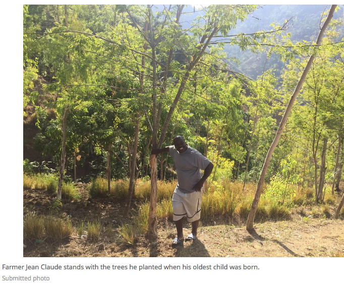 Reforestation project makes impact in Haiti, looks to grow